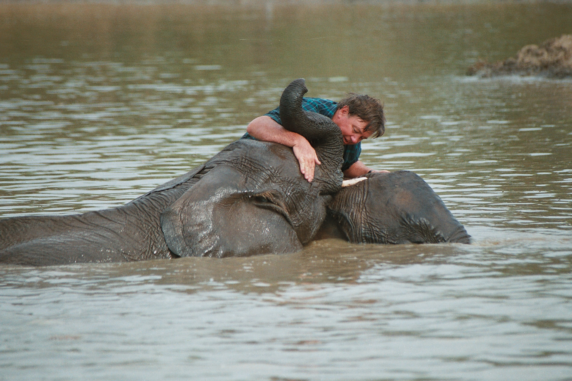 """Elephant Whisperer"" Rory Hensman"